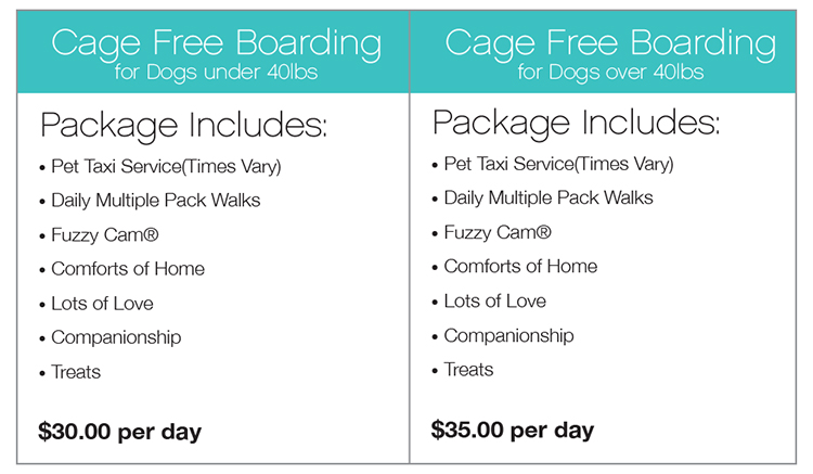 Cage Free Boarding Pack Leader Plus